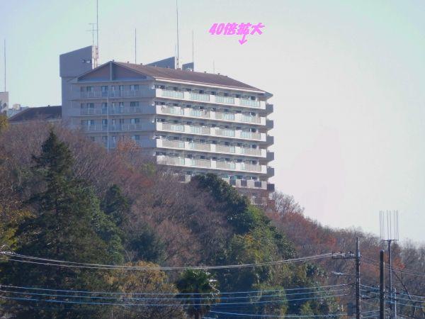 DSCN0153.jpg