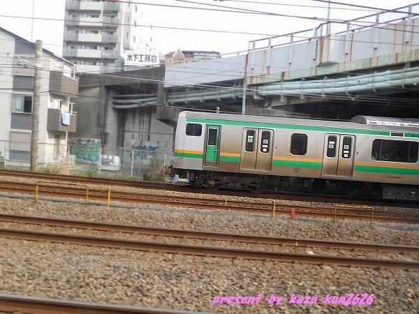 DSCN0796.jpg
