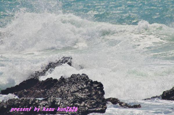 IMGP3635.jpg