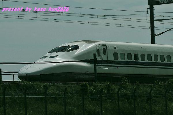 IMGP3752.jpg