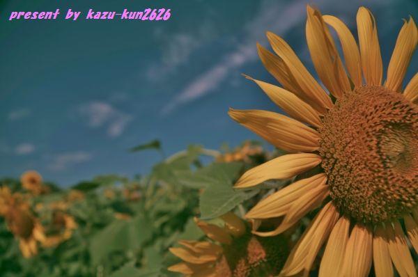 IMGP3810.jpg