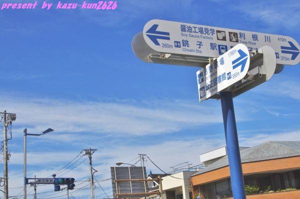 IMGP4772.jpg