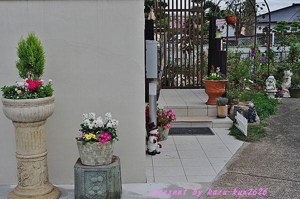 IMGP6344.jpg