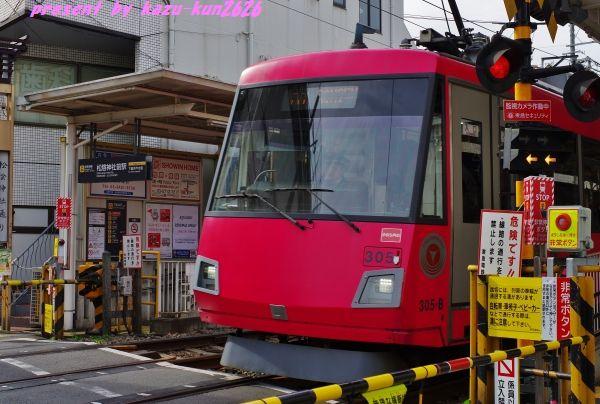 IMGP6492.jpg