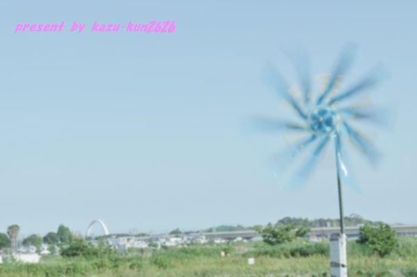 IMGP1403.jpg