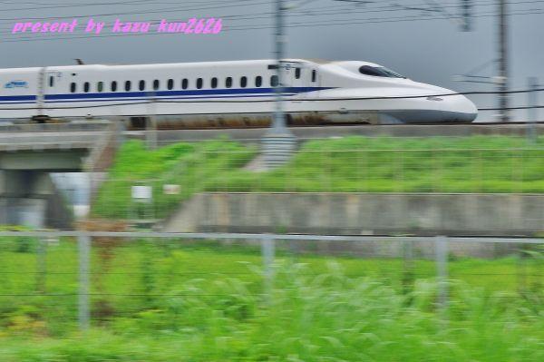 IMGP3609.jpg