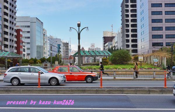 IMGP7510.jpg