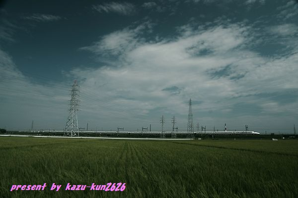 IMGP3806.jpg