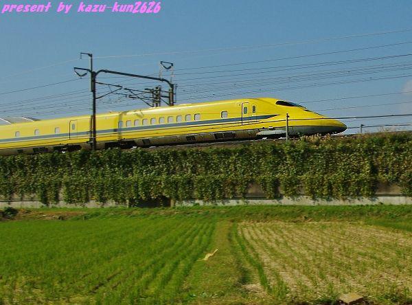 IMGP5922 (2).jpg