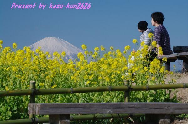 20110105吾妻山3.jpg