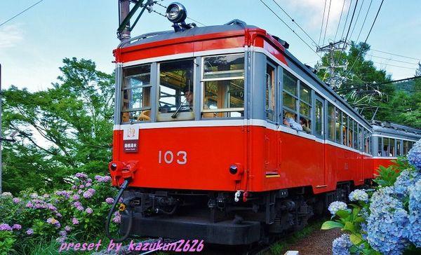 IMGP0781.jpg