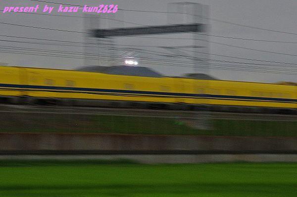 IMGP3023 (2).jpg