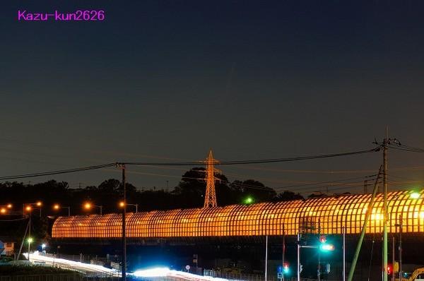 IMGP3224-1.jpg