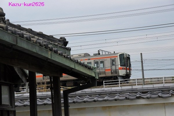 IMGP4482.jpg